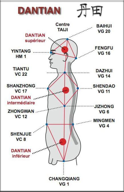 dantien diagram